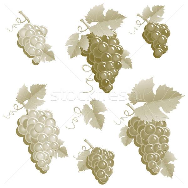 Stok fotoğraf: üzüm · bağbozumu · ayarlamak · gıda · şarap · doğa