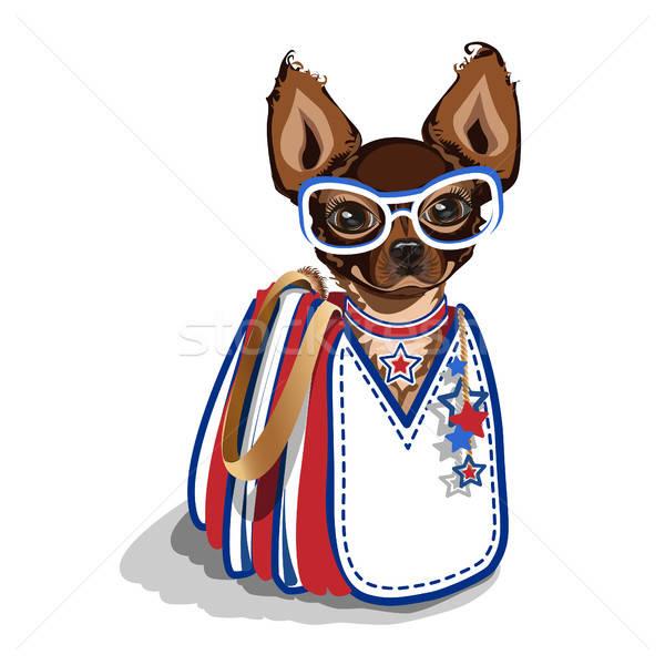 Fashionable bag with a small dog Stock photo © bedlovskaya