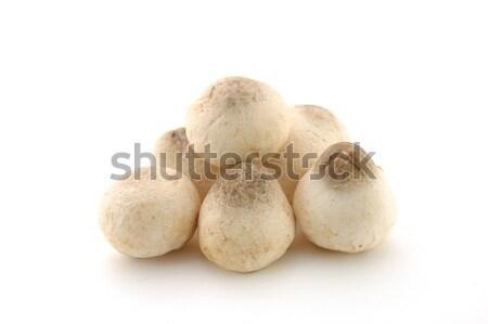 соломы грибы изолированный белый продовольствие здоровья Сток-фото © bedo