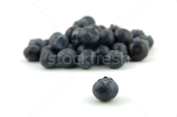 Blueberry stand out Stock photo © bedo