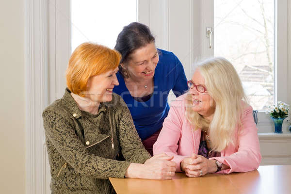 Happy Middle Age Women Talking at Dining Table Stock photo © belahoche
