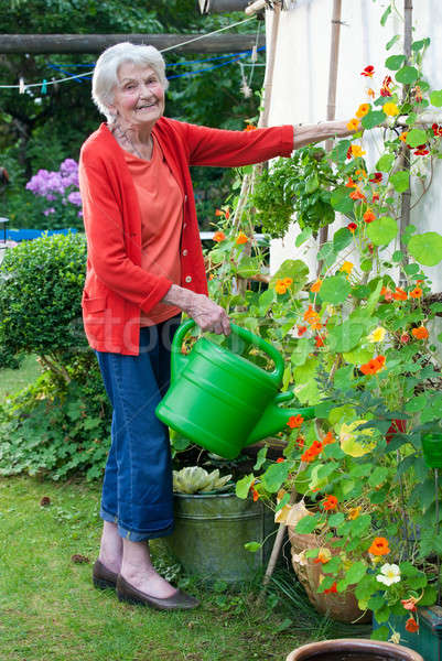 Old Woman at the Garden with Watering Can Stock photo © belahoche
