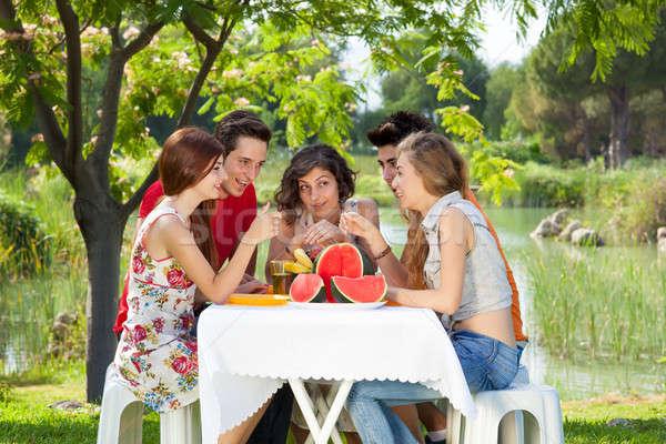 Pique-nique potins groupe amis jouir de parc Photo stock © belahoche