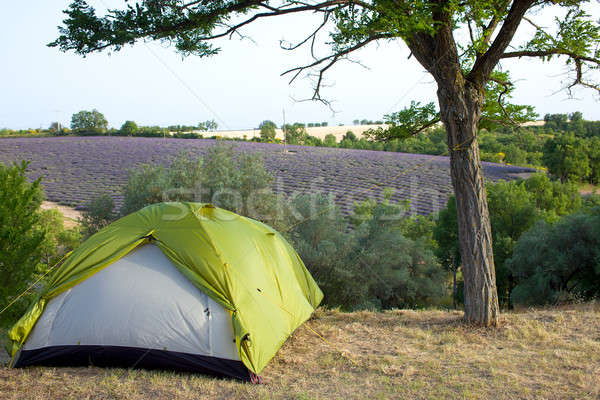 Camping tente France vert olive Photo stock © belahoche