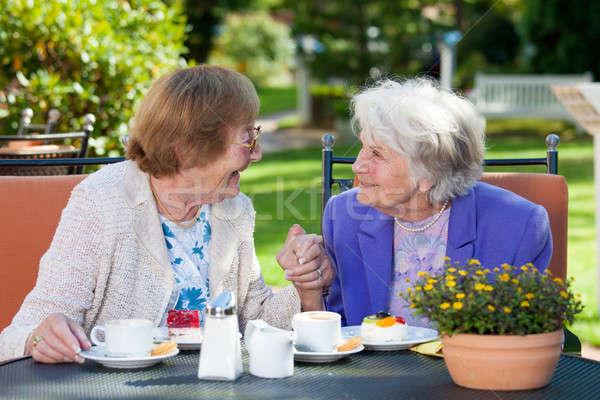 Feliz idoso mulheres jardim tabela Foto stock © belahoche