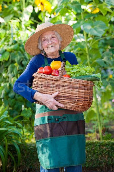 Gelukkig mand groenten portret Stockfoto © belahoche