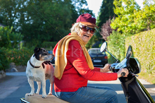 高齢者 女性 犬 スクーター トレンディー ストックフォト © belahoche