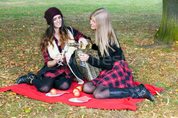 Young people having picnic in park among autumn leaves.  Stock photo © belahoche