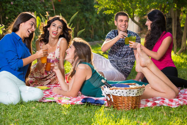 Pequeño grupo sonriendo amigos picnic cesta botella de vino Foto stock © belahoche