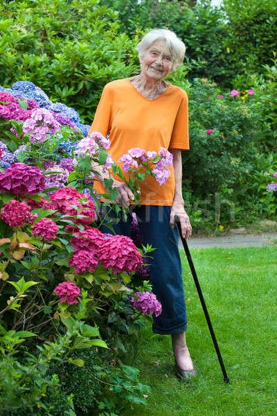 Souriant supérieurs femme permanent jardin de fleurs Photo stock © belahoche