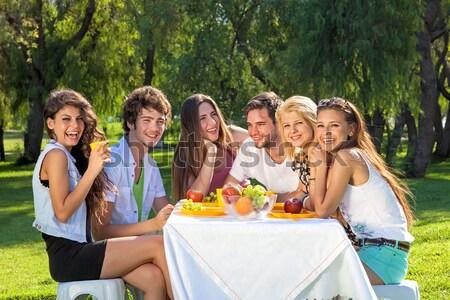Stok fotoğraf: Grup · genç · arkadaşlar · piknik · açık · havada · park