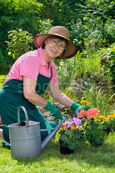 Happy lady transplanting spring flowers Stock photo © belahoche