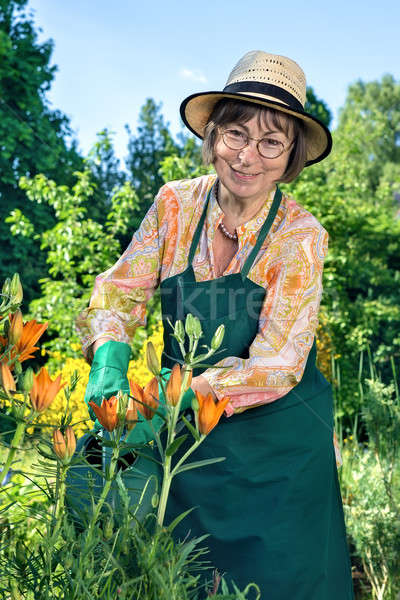 Woman standing watering plants with a happy smile Stock photo © belahoche