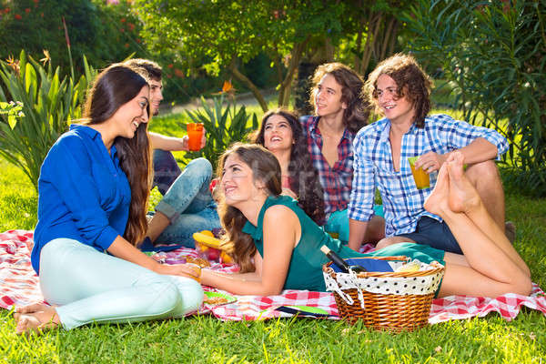 Group of six friends having a picnic in the park Stock photo © belahoche