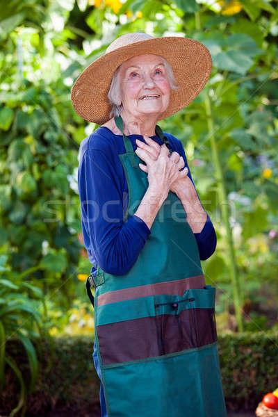 Figyelmes idős nő kert kalap kötény Stock fotó © belahoche
