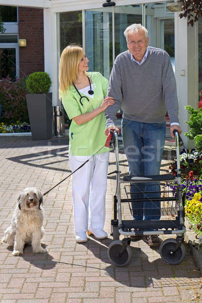 Nurse Helping Man with Walker Take Dog for Walk Stock photo © belahoche