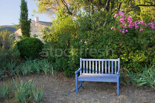 Blauw geschilderd houten tuin bank Frankrijk Stockfoto © belahoche