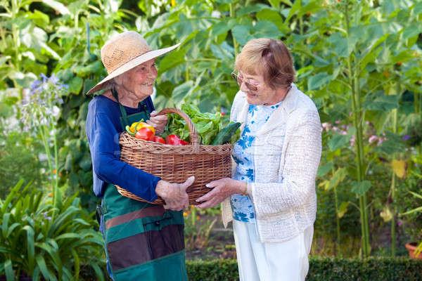 Rijpe vrouw helpen senior tuinman mand volwassen Stockfoto © belahoche