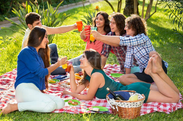 Six friends toasting on a picnic blanket Stock photo © belahoche