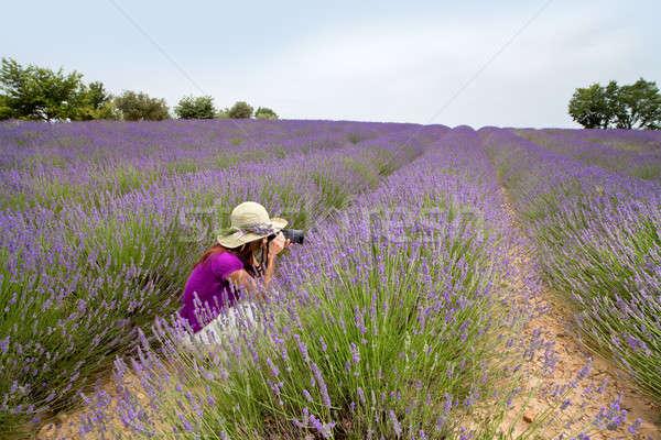 Vrouwelijke vergadering lavendel veld foto's mooie vrouw Stockfoto © belahoche