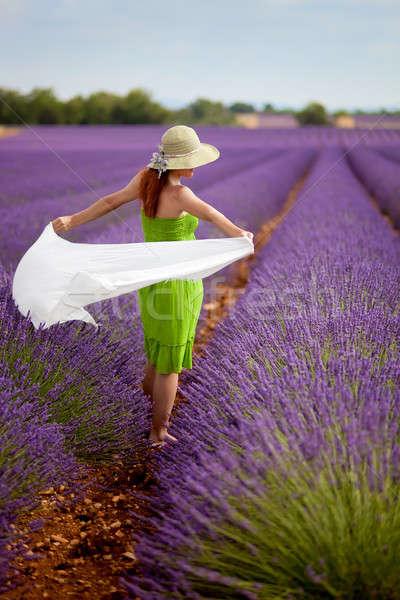 ブルネット 女性 徒歩 ラベンダー畑 フランス 魅力のある女性 ストックフォト © belahoche