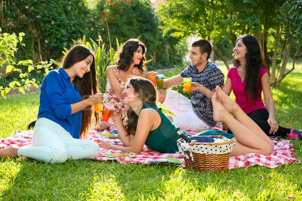 Group of five friends with drinks on a blanket Stock photo © belahoche