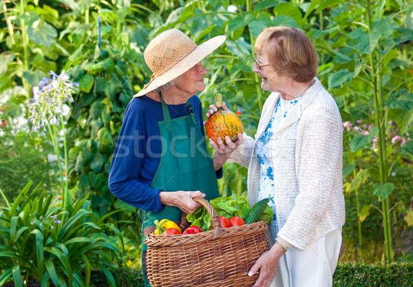 Supérieurs femmes ferme panier deux Photo stock © belahoche
