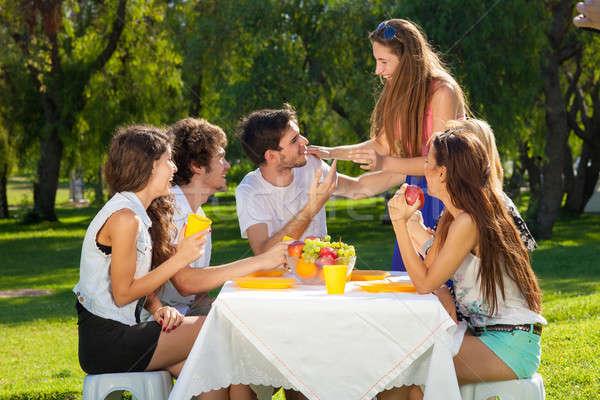 Grupo adolescentes verano picnic sesión Foto stock © belahoche