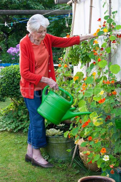 Yaşlı kadın çiçek bitkiler bahçe tam uzunlukta Stok fotoğraf © belahoche