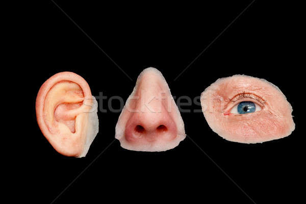 Artificial Colored Silicone Made Facial Prostheses Stock photo © belahoche