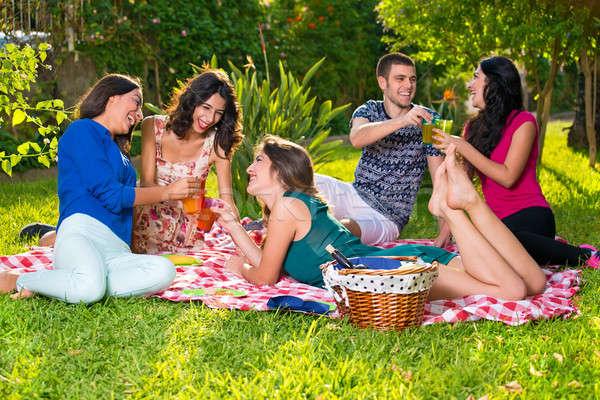 Vijf glimlachend vrienden dranken park picknickdeken Stockfoto © belahoche
