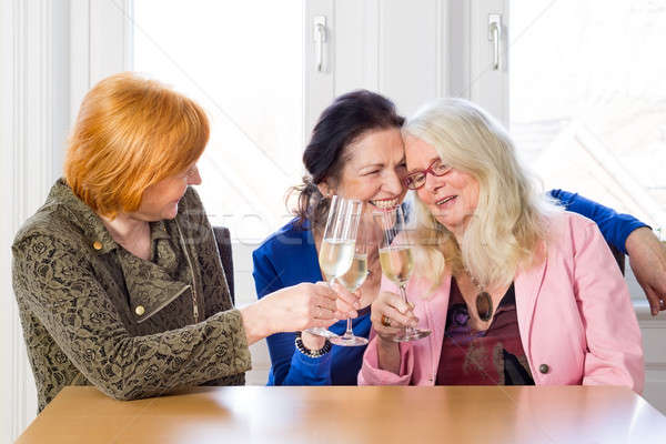 Happy Women Friends Having Wine at the Table Stock photo © belahoche