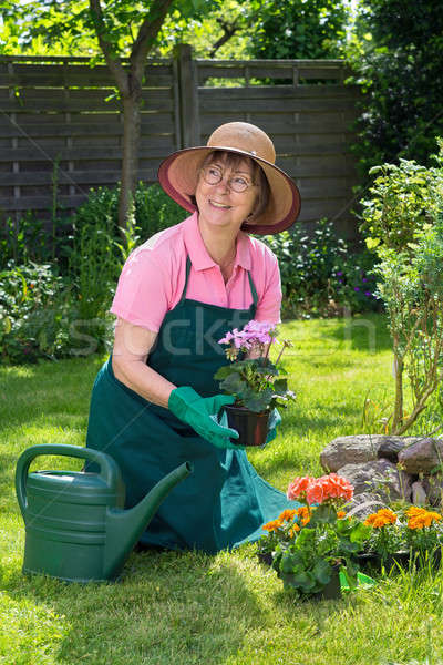 Smiling middle aged woman gardening Stock photo © belahoche