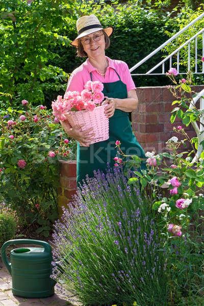 Cute supérieurs jardinier roses Retour lunettes Photo stock © belahoche