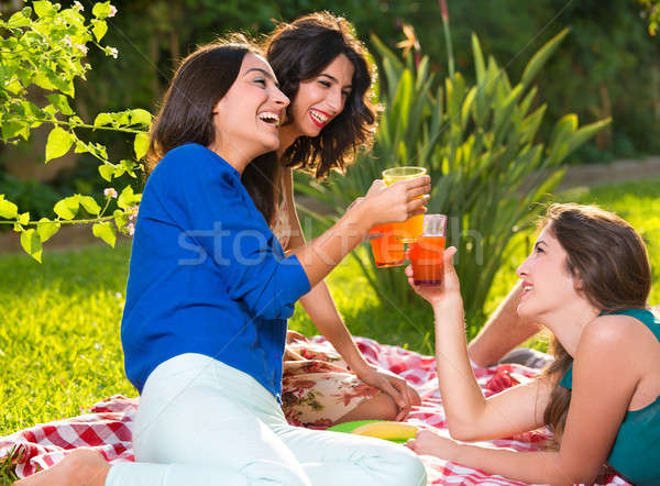 Three cheerful women drinks on a sunny afternoon Stock photo © belahoche