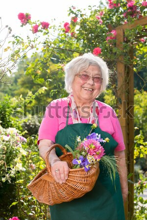 Elderly with Doctor and Caregiver at the Garden Stock photo © belahoche