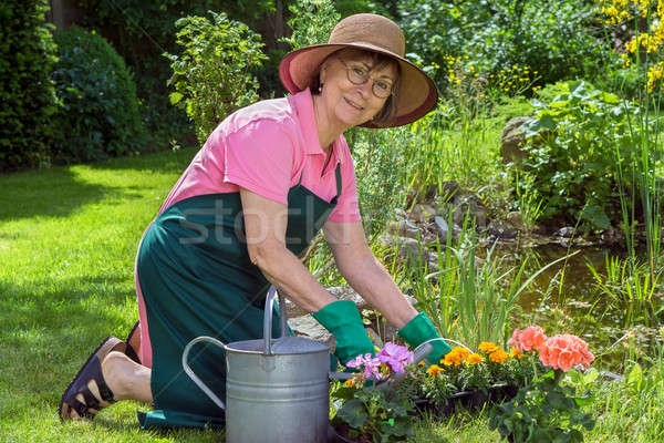 Middle-aged woman working in her garden Stock photo © belahoche