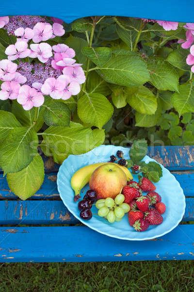 Besleyici meyve plaka üst sandalye Stok fotoğraf © belahoche