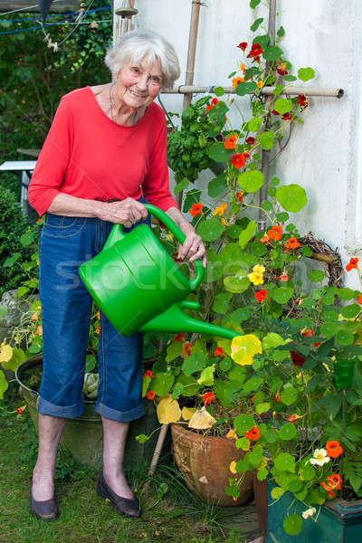 öregasszony locsol virág növények kert teljes alakos Stock fotó © belahoche