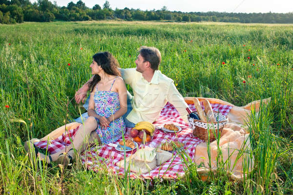Affectionate young couple on a summer picnic Stock photo © belahoche