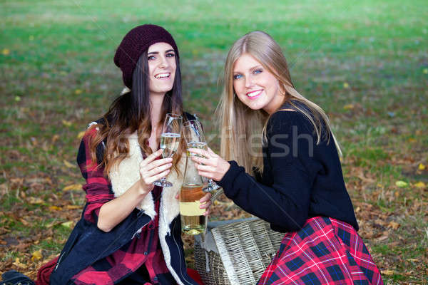 Young ladies having picnic in a park.  Stock photo © belahoche