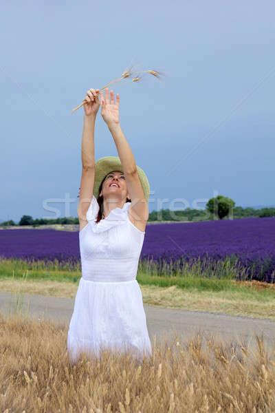 幸せ 若い女性 白いドレス 立って トウモロコシ畑 ストックフォト © belahoche