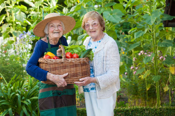 Two Elderly Holding a Basket of Veggies Together Stock photo © belahoche