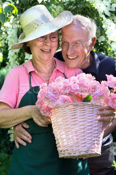 Heureux couple de personnes âgées rose jardin lunettes Photo stock © belahoche