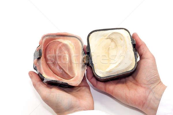 Sztuczny ucha finał produktu negatywne gipsu Zdjęcia stock © belahoche
