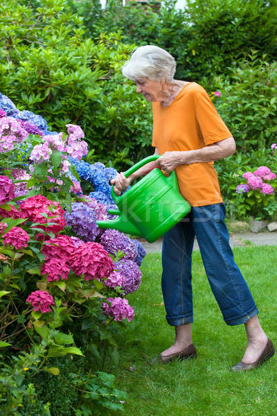 Old Woman Watering Pretty Flowers at the Garden Stock photo © belahoche