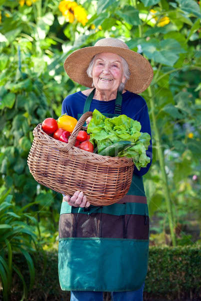 Old Woman with Basket of Vegetables at the Garden Stock photo © belahoche