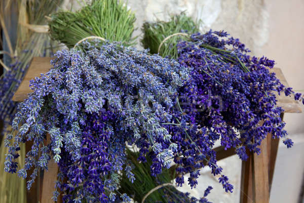 Bouquets of lavender, close up.  Stock photo © belahoche