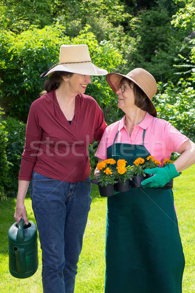 Two women working in a spring garden Stock photo © belahoche