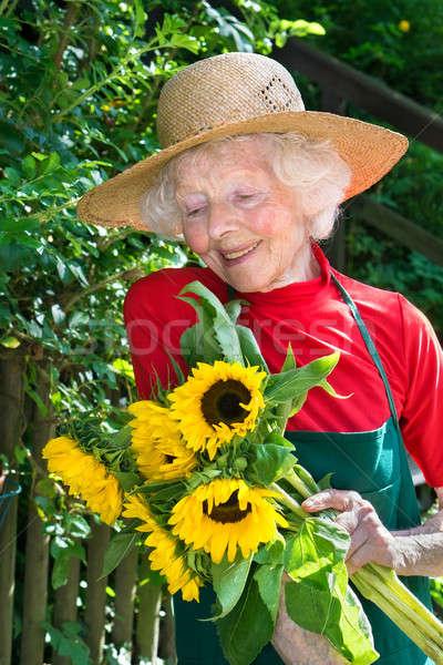 Proud elderly gardener admiring her flowers. Stock photo © belahoche
